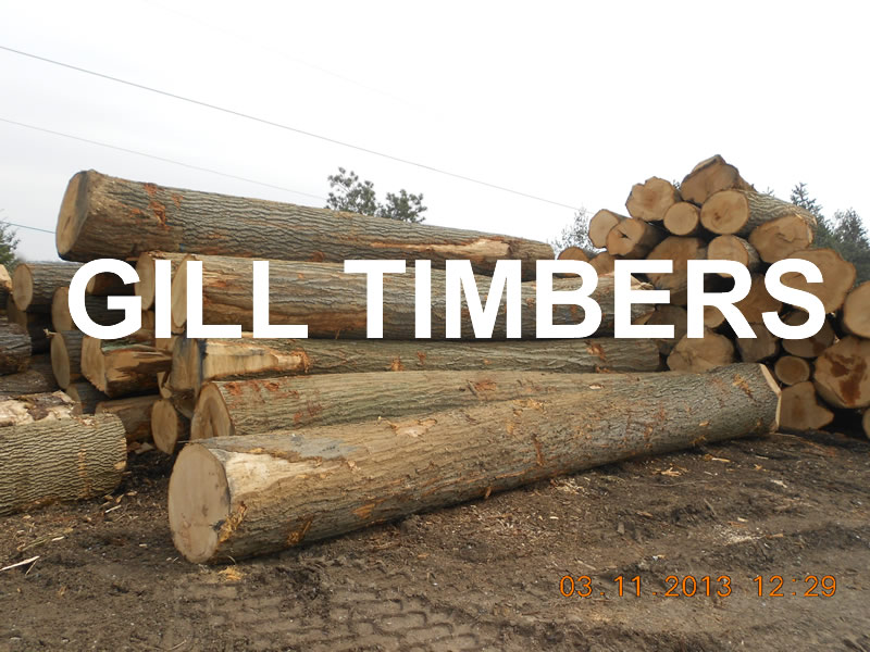 Ash Logs, White Oak, Red Oak