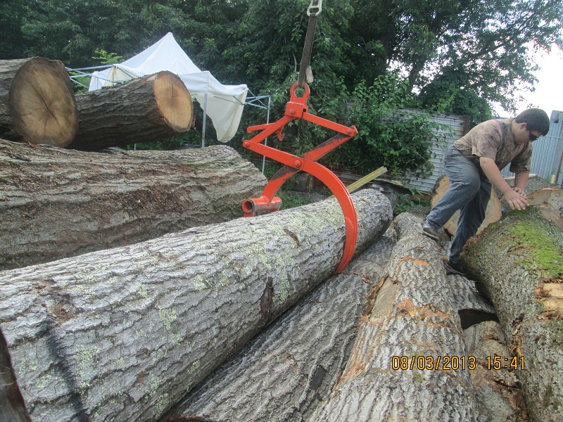 Oak Logs India Supplies