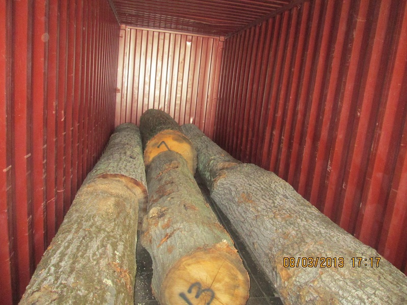 Oak Logs India Supplies
