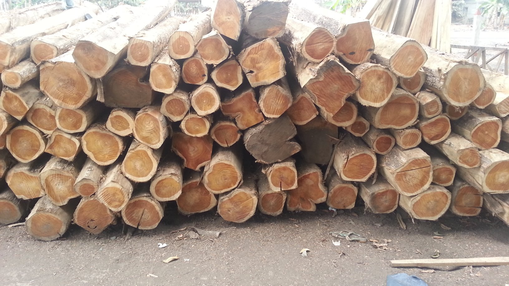 Gill Timbers Teak Supplies